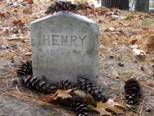 By the time Kristi Martin took this photo on the following Tuesday, many more pine cones had found their way to HENRY.