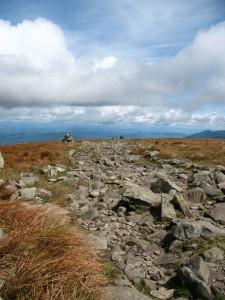 Rock-strewn Way