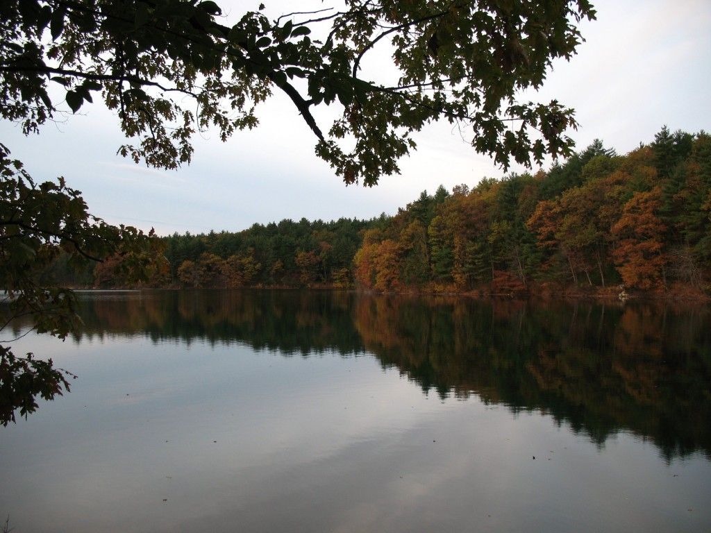 Walden's Reflective Waters,  (albeit in a different season)
