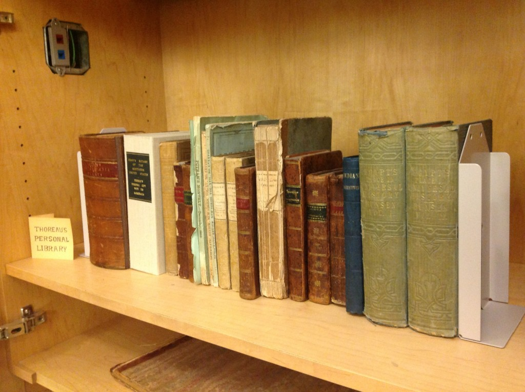 Some of the books that contributed to Thoreau's journals. Henry's Walden Pond library.