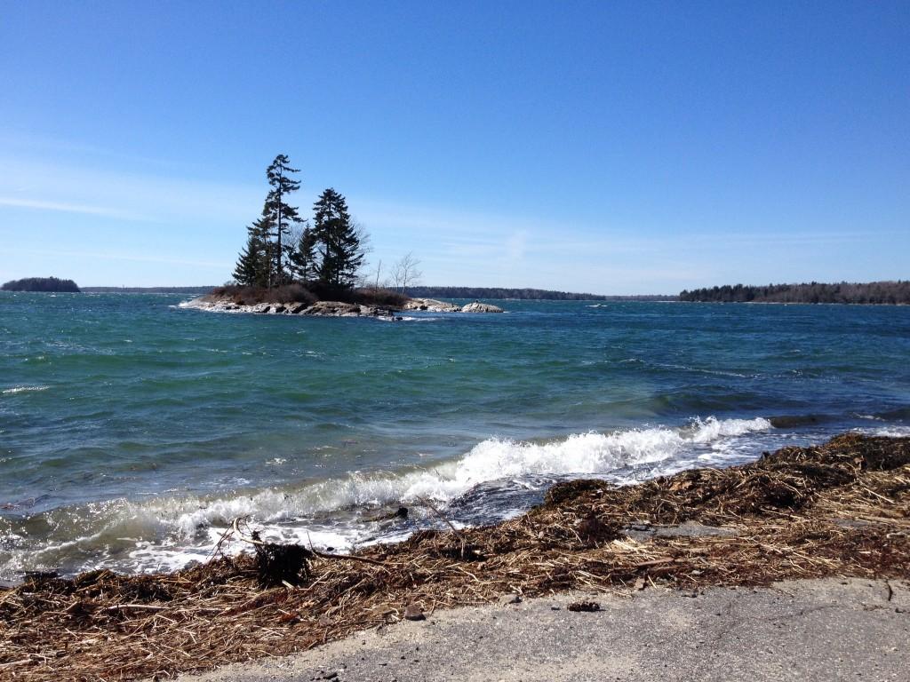 Wind-ruffled bay