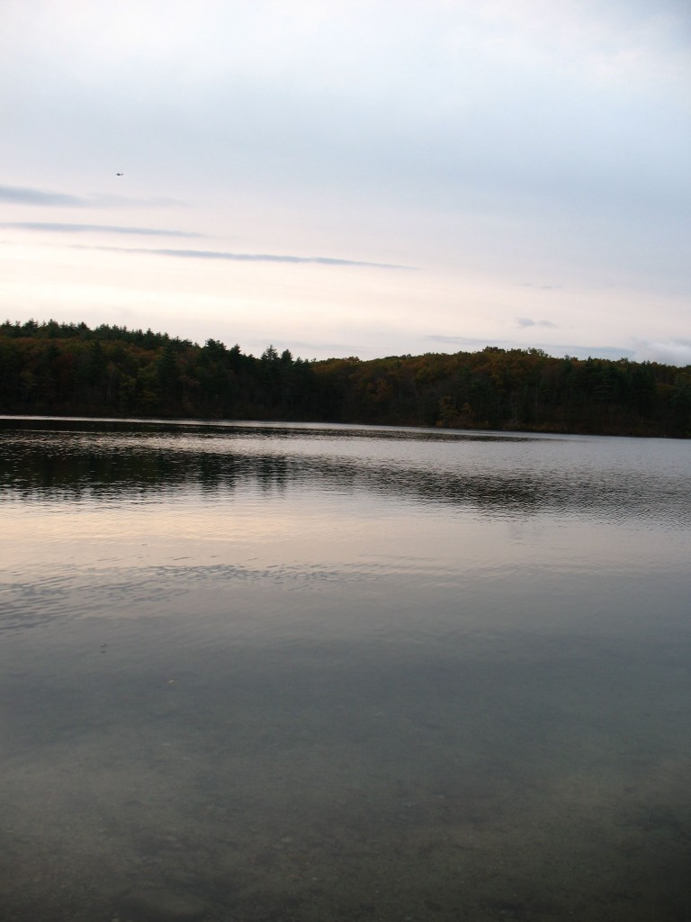 Morning water at Walden