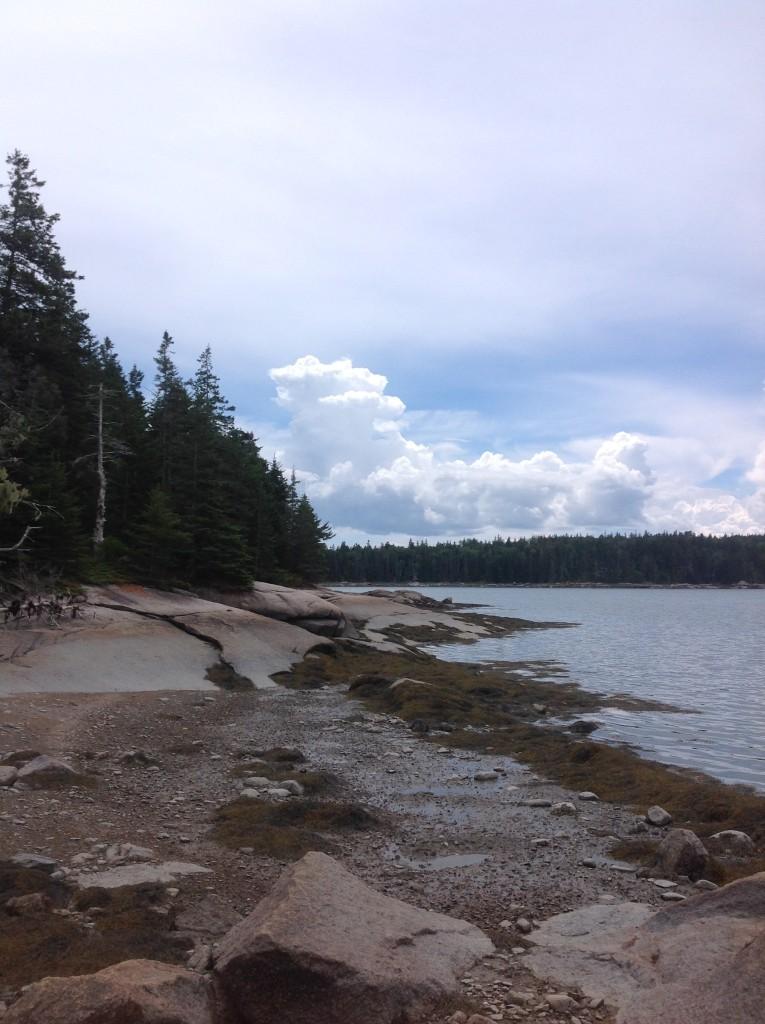 Island Summer Scene