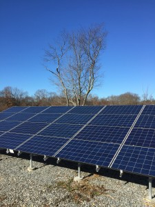 Thoreau Farm's solar panels on a best November Saturday.