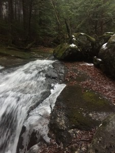 Snyder Brook going to winter.