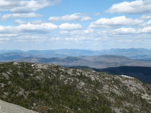 Firescrew's Ridge and Its Returning Forest (note Mt. Washington in the Farground)