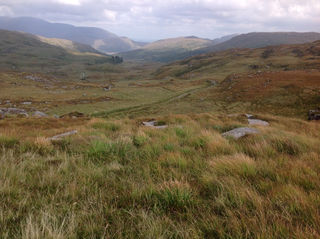 The way down the valley to Killarney