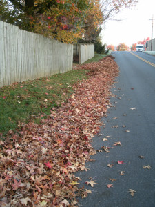 The day's leaf-work awaits the truck.