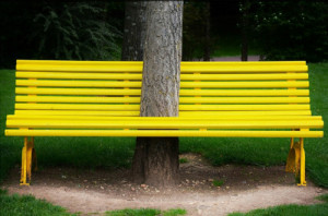 Not Thoreau Farm's yellow bench, which is often unoccupied, but a pleasing one still.